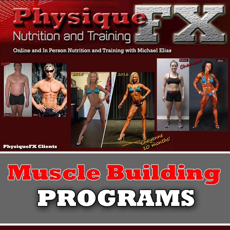 muscle-building-programs.jpg